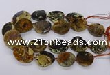 CNG3192 15.5 inches 22*30mm - 30*40mm freeform opal gemstone beads