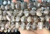 CNG3605 15.5 inches 13*20mm - 15*24mm faceted nuggets moonstone beads