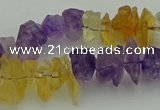 CNG5045 15.5 inches 4*8mm - 6*15mm nuggets amethyst & citrine beads