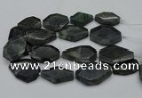 CNG5081 15.5 inches 20*30mm - 35*45mm freeform labradorite beads