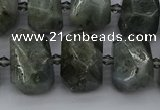 CNG5221 15.5 inches 12*16mm - 15*20mm faceted nuggets labradorite beads