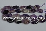 CNG5264 20*30mm - 22*35mm faceted freeform dogtooth amethyst beads