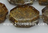 CNG5454 15.5 inches 20*30mm - 35*45mm faceted freeform opal beads