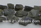 CNG5527 15.5 inches 6*8mm - 10*15mm nuggets labradorite beads