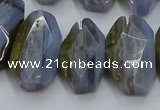 CNG5802 15*20mm - 22*28mm faceted freeform blue lace agate beads