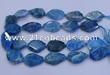 CNG5960 15.5 inches 18*25mm - 25*35mm faceted freeform apatite beads