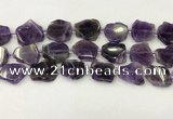 CNG6945 15.5 inches 20*20mm - 25*25mm freeform amethyst beads