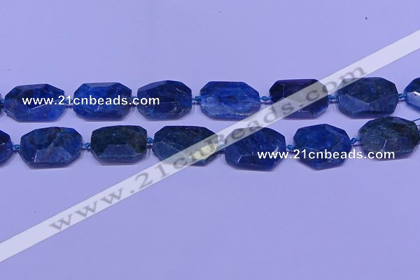 CNG7533 15.5 inches 18*25mm - 25*35mm faceted freeform apatite beads