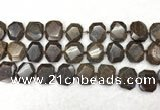 CNG7568 15.5 inches 18*25mm - 20*28mm faceted freeform bronzite beads