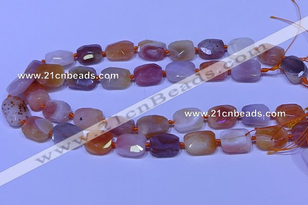 CNG7621 12*16mm - 13*18mm faceted freeform red botswana agate beads
