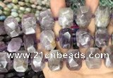 CNG7777 15.5 inches 13*18mm - 15*25mm faceted freeform amethyst beads