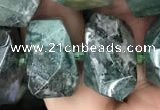 CNG7856 15.5 inches 12*16mm - 15*20mm faceted nuggets moss agate beads