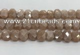CNG8616 10*13mm - 12*16mm faceted freeform moonstone beads