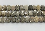 CNG8623 10*13mm - 12*16mm faceted freeform chrysanthemum agate beads