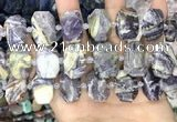 CNG8631 15.5 inches 13*18mm - 15*25mm faceted freeform charoite beads