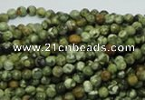 CPS54 15.5 inches 4mm faceted round green peacock stone beads