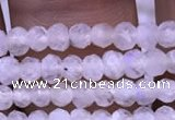 CRB1964 15.5 inches 2*3mm faceted rondelle white moonstone beads