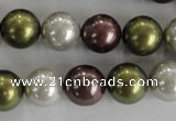 CSB1081 15.5 inches 12mm round mixed color shell pearl beads