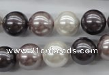 CSB1123 15.5 inches 14mm round mixed color shell pearl beads