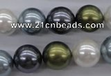 CSB1124 15.5 inches 14mm round mixed color shell pearl beads