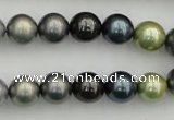 CSB340 15.5 inches 10mm round mixed color shell pearl beads