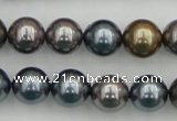 CSB366 15.5 inches 12mm round mixed color shell pearl beads