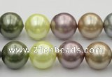 CSB381 15.5 inches 14mm round mixed color shell pearl beads