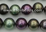 CSB386 15.5 inches 14mm round mixed color shell pearl beads