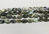 CSB4126 15.5 inches 8*12mm oval abalone shell beads wholesale