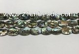 CSB4161 15.5 inches 12*16mm flat drum abalone shell beads wholesale