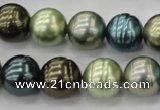 CSB623 15.5 inches 14mm whorl round mixed color shell pearl beads