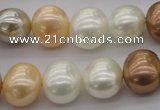CSB695 15.5 inches 13*15mm oval mixed color shell pearl beads