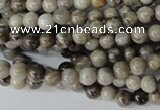 CSL10 15.5 inches 4mm round silver leaf jasper beads wholesale