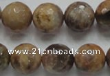 CSS100 15.5 inches 16mm faceted round natural sunstone beads wholesale