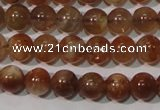 CSS551 15.5 inches 5mm round natural golden sunstone beads