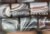 CTB607 15.5 inches 8*10mm tube Botswana agate gemstone beads