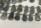 CTD2275 Top drilled 16*28mm - 20*30mm faceted freeform labradorite beads