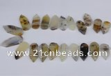 CTD2734 Top drilled 15*28mm - 18*45mm freeform montana agate beads