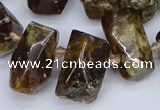 CTD3706 Top drilled 10*15mm - 15*25mm faceted nuggets garnet beads