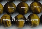 CTE1221 15.5 inches 12mm round AB+ grade yellow tiger eye beads
