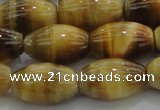CTE1518 15.5 inches 12*16mm rice golden tiger eye beads wholesale