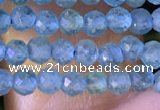 CTG1380 15.5 inches 2mm faceted round tiny apatite beads