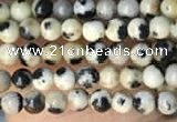 CTG2005 15 inches 2mm,3mm dalmatian jasper beads wholesale