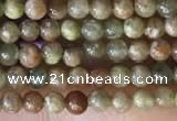 CTG2045 15 inches 2mm,3mm China unakite beads