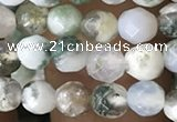 CTG2532 15.5 inches 4mm faceted round tree agate beads