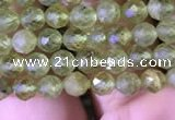 CTG813 15.5 inches 4mm faceted round tiny prehnite beads