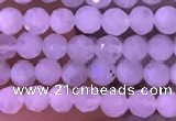 CTG832 15.5 inches 4mm faceted round tiny white moonstone beads