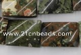 CTW398 15.5 inches 18*25mm twisted rectangle rhyolite gemstone beads