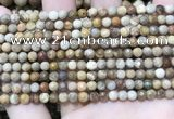 CWJ450 15.5 inches 4mm faceted round wood jasper beads wholesale