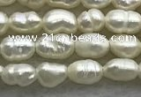 FWP151 14.5 inches 2.5mm rice white freshwater pearl strands